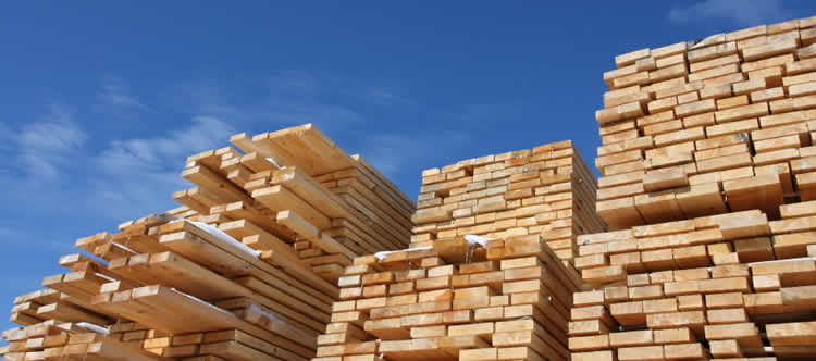 About Kosny Timber
